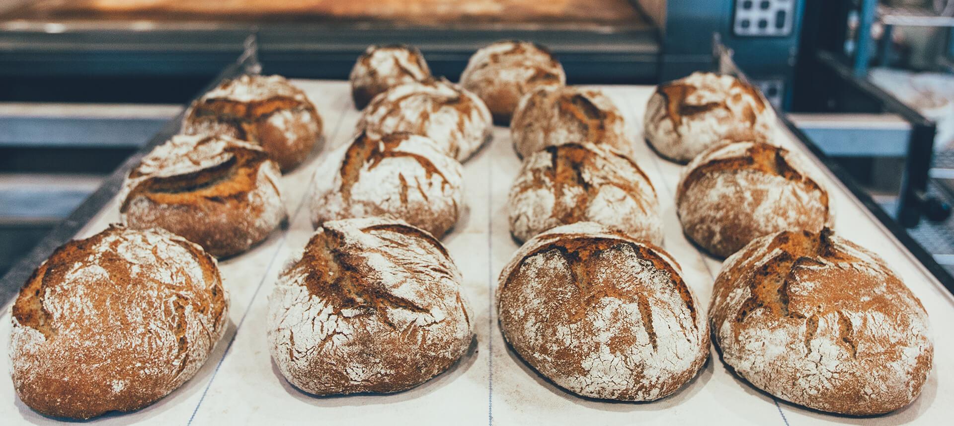 Bread - Header Image